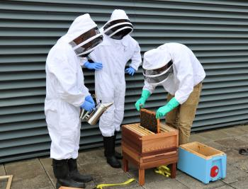 Beekeepers at CRM